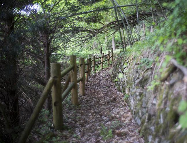 小倉山遊歩道
